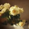 Roses jaunes 60×80 cm