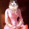 Portrait de chat Norvégien femme 1900 – 90 X 70 cm